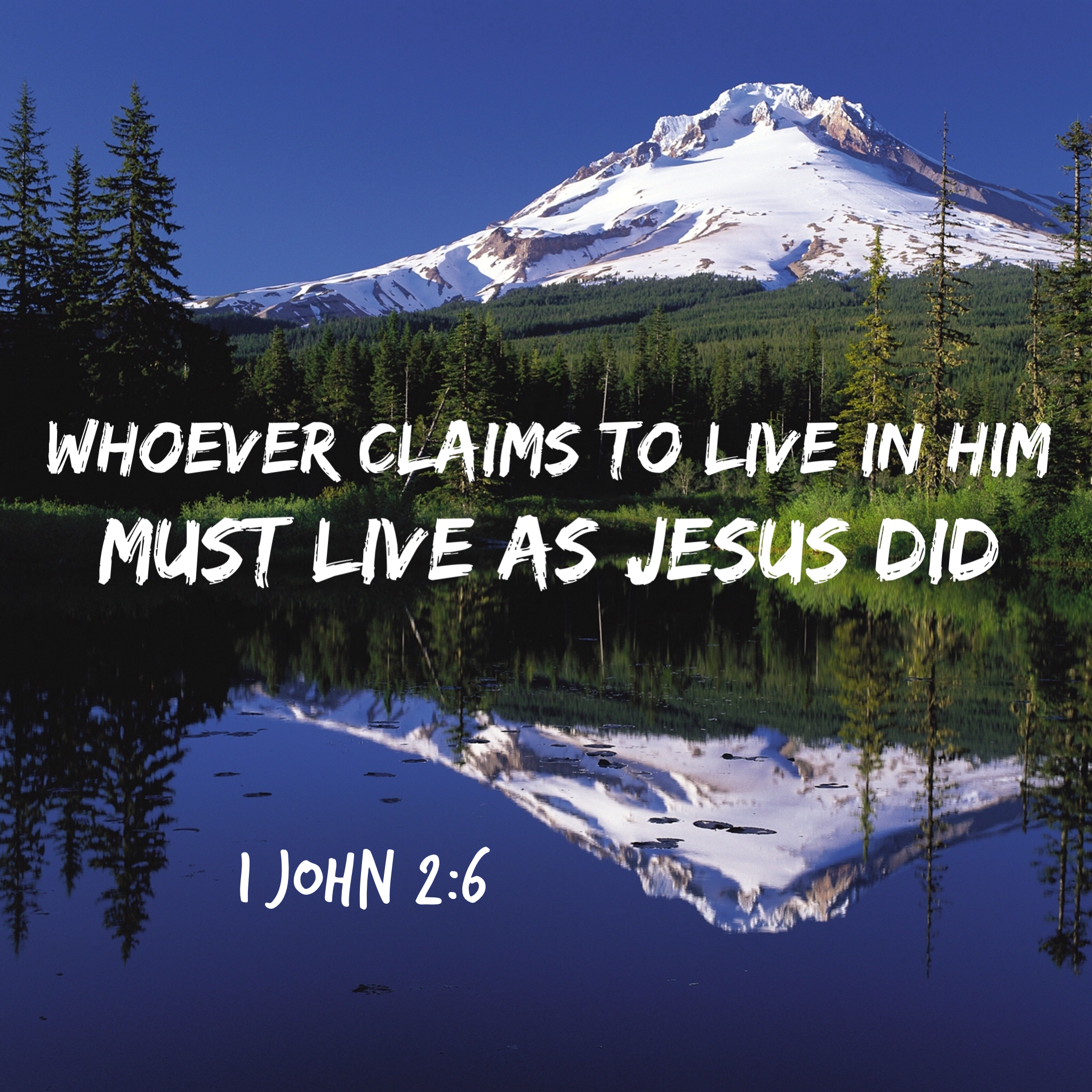 1 John 2:6 scripture picture